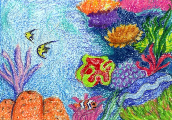 A Busy Reef: a kid's short bedtime story and relaxation