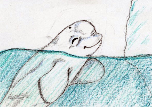 Curious Baby Whale: Acalming bedtime and nap time story for children