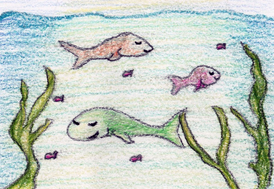 Waters of Wonder: a mindful kids' story