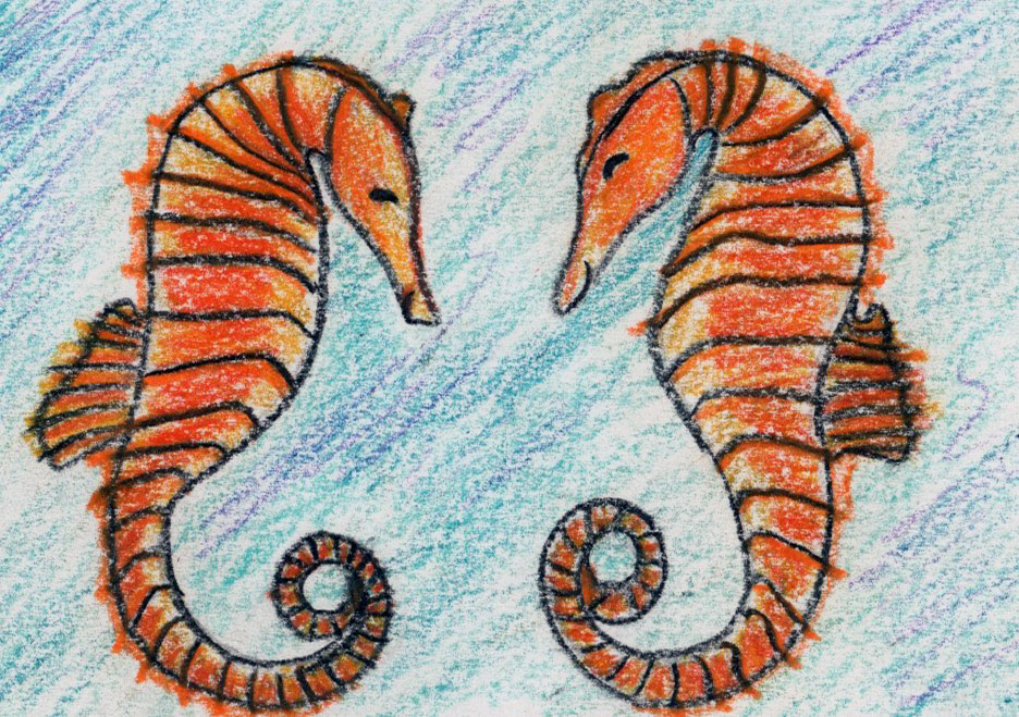 Seahorse Twins: a mindful story for kids