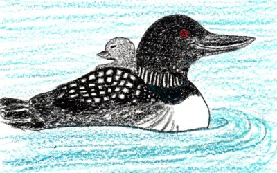 Little Loons: a mindful children's story