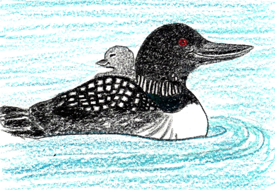 139. Little Loons: a mindful children's story
