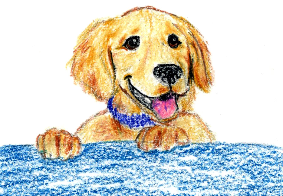 514. Shelter Pet Parade: a guided meditation and story for kids