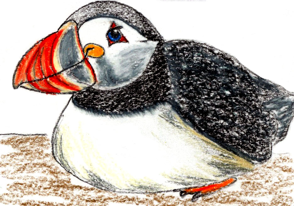 144. Puffin Fun: a relaxation and story for your nap time routine