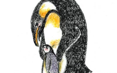 148. Penguin Games: a calming story and meditation